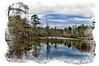The wetlands at Bellingrath Gardens in Alabama