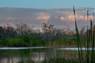 2009 Everglades-162