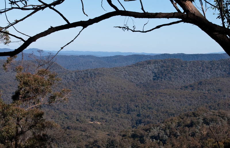 View from the road in to Wombat Valley Wild Country Cabins<br /> July 2011