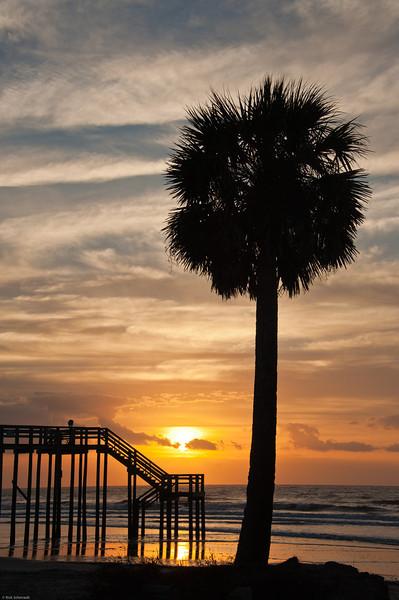 f4 Charleston Pics 1 star Rick-127