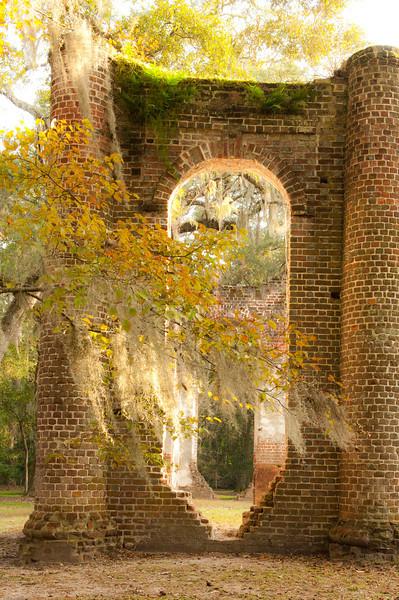 f4 Charleston Pics 1 star Rick-146