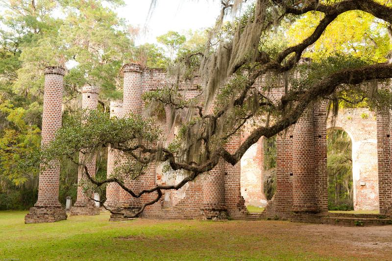 f4 Charleston Pics 1 star Rick-138