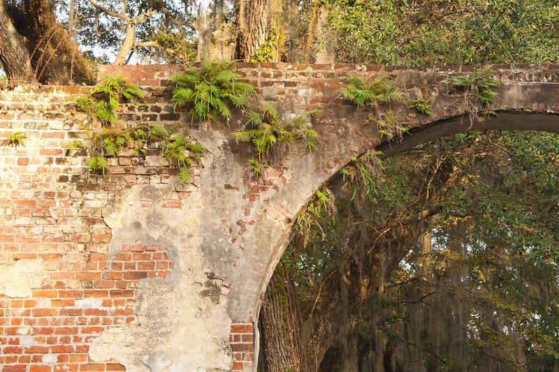 f4 Charleston Pics 1 star Rick-149