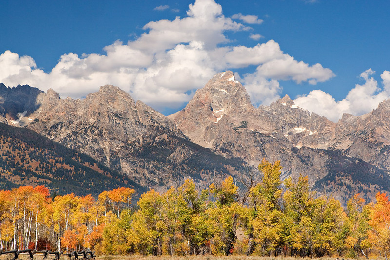FALL SPLENDOR IN THE TETONS