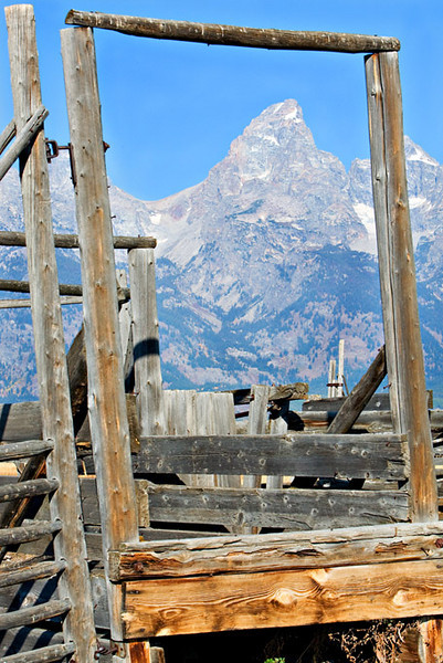"""FRAMED"" GRAND TETON PEAK"