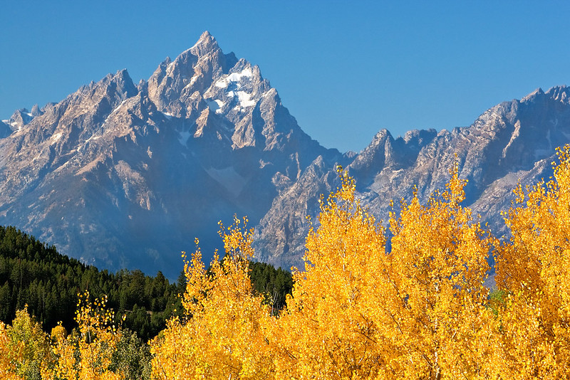 GRAND TETON IN AUTUMN DRESS