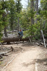 Bristle Cone Trail-Bryce
