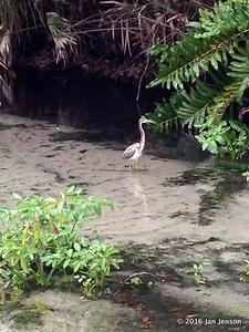 Hunting lunch @ Wekiva Falls RV Resort, Sorrento, FL - March 2016
