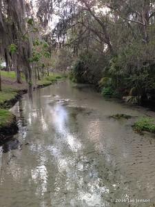 Shallow sulfur spring water running to Wekiva River @ Wekiva Falls RV Resort, Sorrento, FL - March 2016