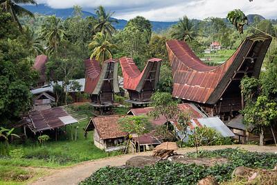 Sulawesi - Toraja village