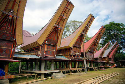 Sulawesi - Rice sheds for Toraja people