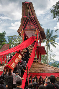 Sulawesi - Toraja Village Funeral Ceremony Carrying Casket up to top