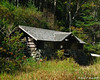 Old cabin at Profile Lake