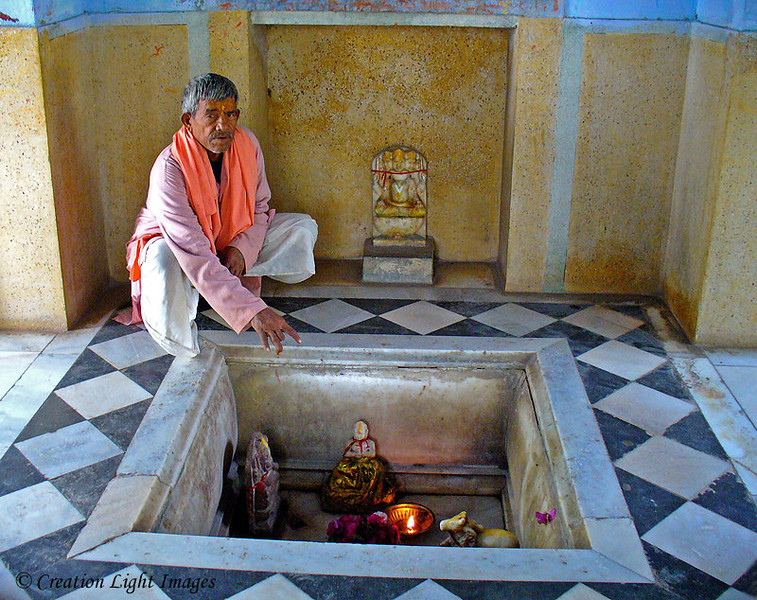 Hindu Priest In Temple