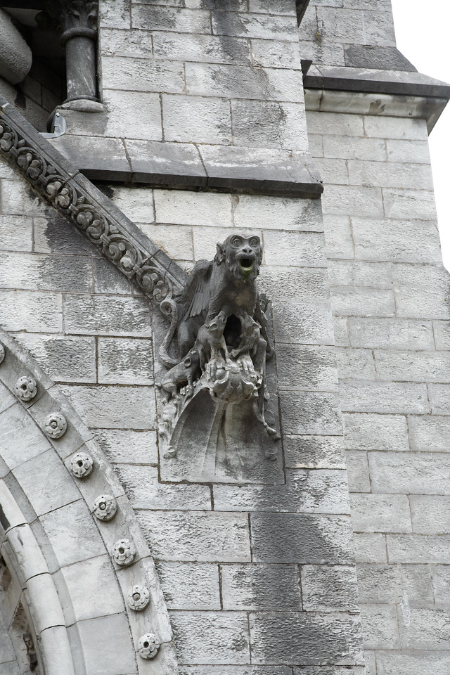 """St. Finbarr's Cathedral (see the """"details"""" chapter for more carved rock on this cathedral)"""