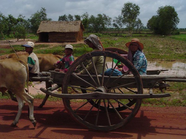 Cambodian Family rides a ox cart