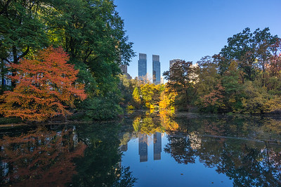 Fall '15 Central Park, NYC