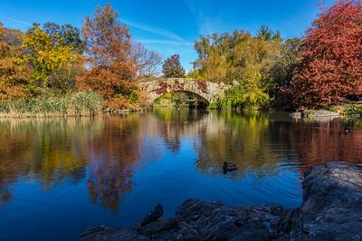 Fall '16, Central Park