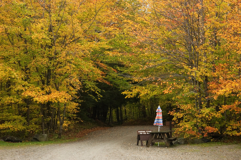 Fall color at the parking lot for our hike up Mt. Mansfield, VT.