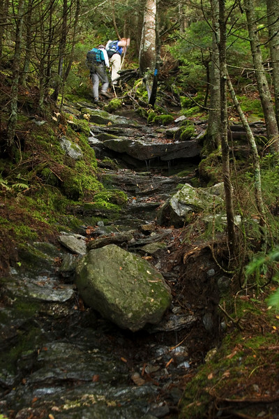 Tough trail!