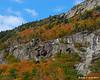 Colors on Mt. Willard