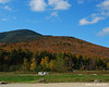 Mt. Tom