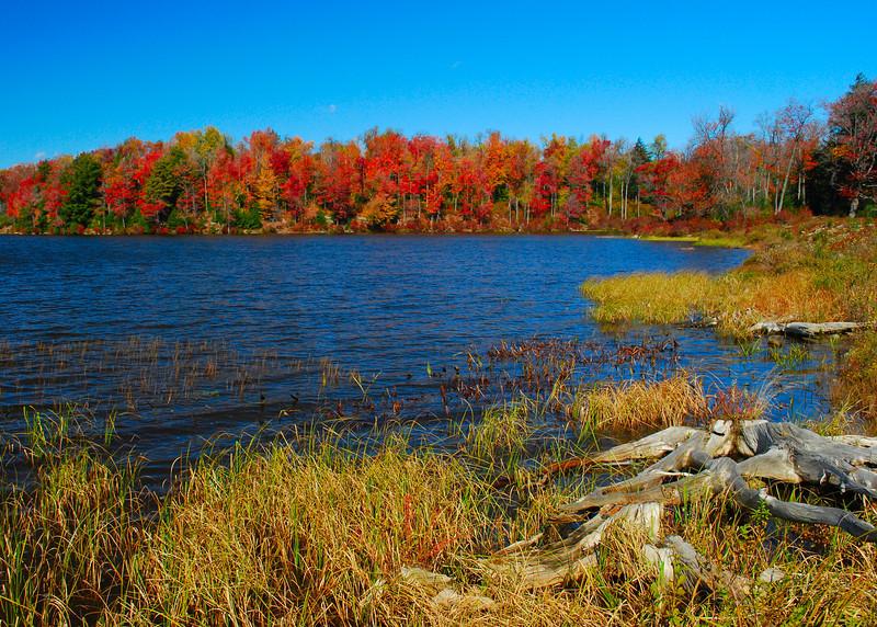 Lake Jean<br /> Ricketts Glen State Park
