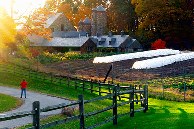 Stone Barns. Pocantico Hills.Tarrytown Westchester County, New York.