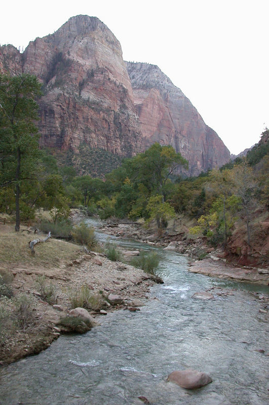 The Virgin River near Zion Lodge.  This river carved the canyon.