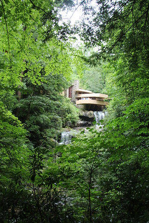 View from the spot where the famous picture of Fallingwater was taken