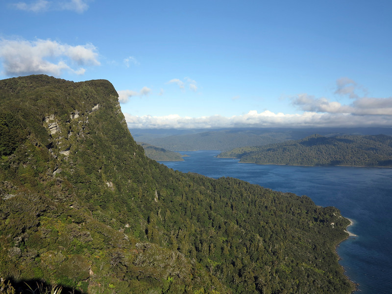 Panekuri Bluff - we walked to Panekuri Hut on the Lake Waikaremoana 'Great Walk'