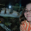 Gab with puffer fish at Kelly Tarlton's, Auckland.