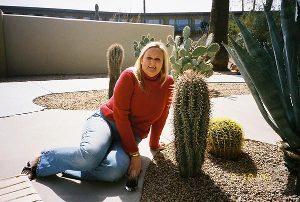 2006 Arizona