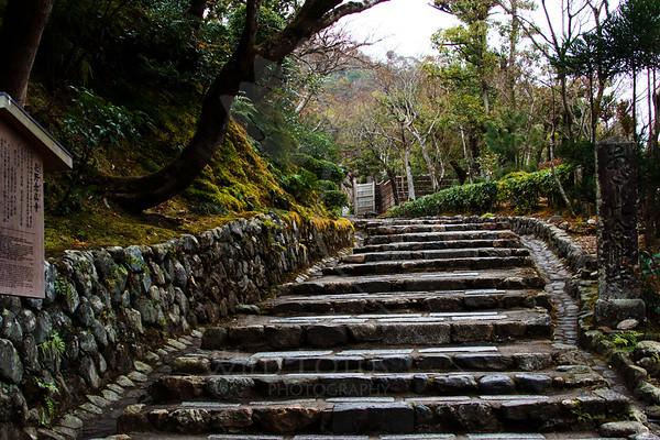 Steps to 8,000 Buddhas<br /> <br /> Location :: Adashino Nenbutsu-ji Temple, Kyoto<br /> <br /> 012013_008106 ICC sRGB 16in x 24in pic