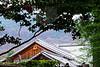 012013_008031 ICC sRGB 16in x 24in pic