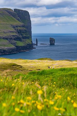 Risin and Kellingin, sea stacks off the northern coast of  Eysturoy