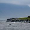 Sheephouse on the Shore of Kirkjebour
