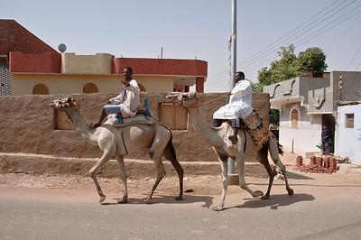 2009-10 Egypt-9928