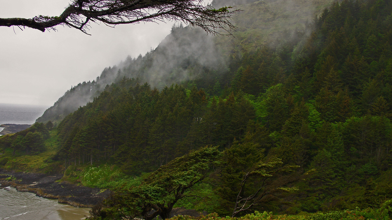 Cape Disappointment, Oregon May 2012