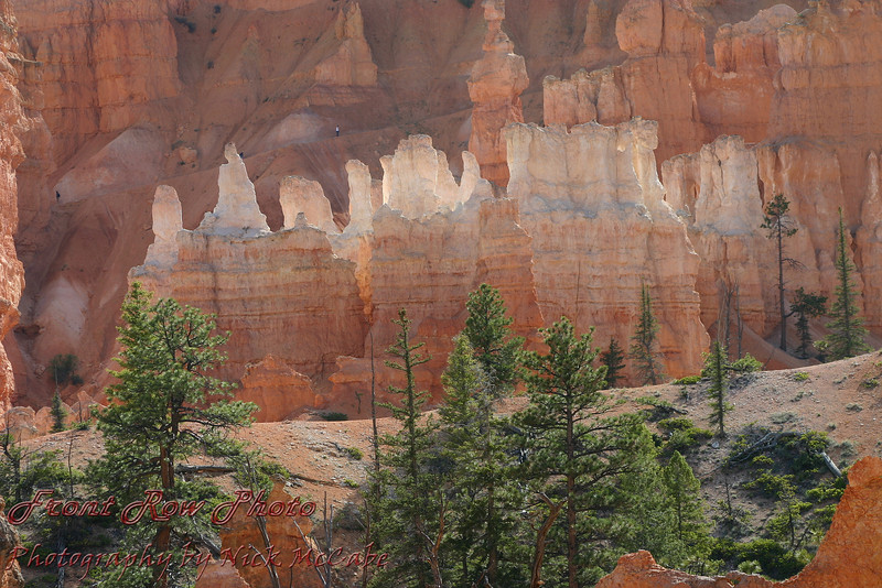 Bryce Canyon<br /> I love the glow you get out of these rocks. For scale notice the tiny hikers on the hill in back.
