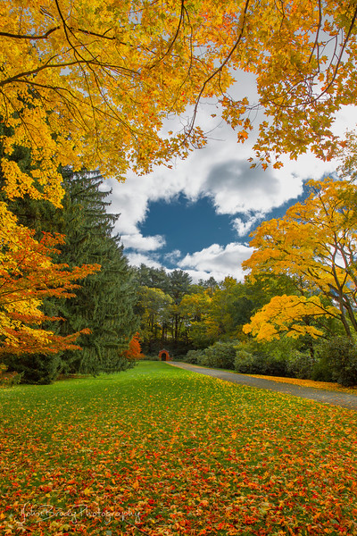Beautiful Autumn Landscape in New England in  Portrait Orientation.  Part of my Travel Art Photos series. Around every bend was a scene like this, hundreds of them, endless beauty and nature - John Brody Photography / JohnBrody.com