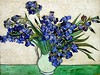 "Vincent van Gogh - Irises In A Vase 1890 also named Iris dans un vase - Painted during his Saint-Remy stay.<br /> New York, The Metropolitan Museum of Art<br /> Van Gogh, hounded by the villagers in Arles for his illness, decided to move to nearby Saint-Rémy and check himself into the asylum as a voluntary patient. Vincent van Gogh spent one year, the most difficult of his life, at the asylum in Saint-Rémy de Provence. It would also prove to be one of his most creative as an artist. Irises was one of his works during his stay. Thanks once more to brother Theo's continued support, the asylum wasn't so bad. Vincent had a bedroom and a room for a studio. The only treatment was ""hydrotherapy"" which consisted of two-hour long baths twice a week. When Vincent wasn't suffering from his illness, he was clear-headed and able to work on his art --- JohnBrody.com"