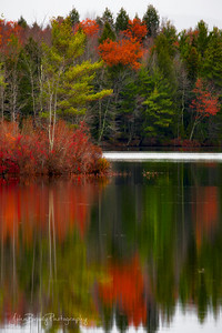 Natures Mirror - Calm wind and still water make for a clear mirror image - John Brody Photography