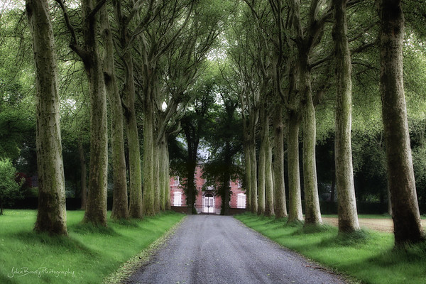 A Tree Lined drive to a Mansion near Bruges, Belgium - Mansion Update 2019 - John Brody Photography / JohnBrodyPhotography.com / JohnBrody.com