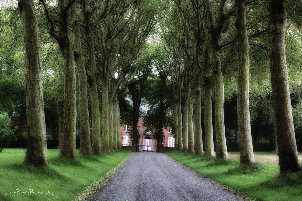 A Tree Lined drive to a Mansion near Bruges, Belgium - John Brody Photography / JohnBrodyPhotography.com / JohnBrody.com