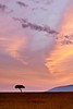 Dusk skies over Masai Mara
