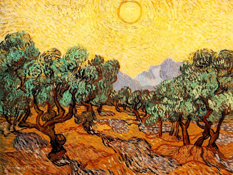 Vincent van Gogh - Olive Trees - John Brody Photography / JohnBrody.com