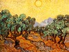 Vincent van Gogh - Olive Trees - John Brody Photography --- JohnBrody.com