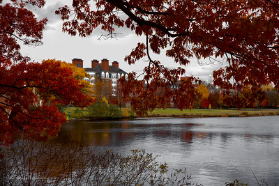 Harvard University Campus - A beautiful Rainy Day at Harvard across the Charles River near Soldiers Field - JohnBrody.com / John Brody Photography / JohnBrodyPhotography.com