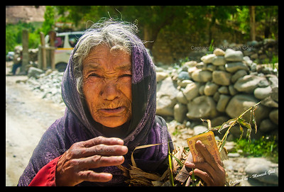 Street Vendor | Ladakhi Woman